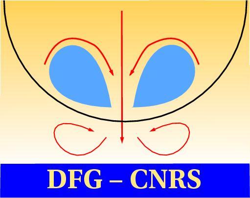 DFG-CNRS-Logo